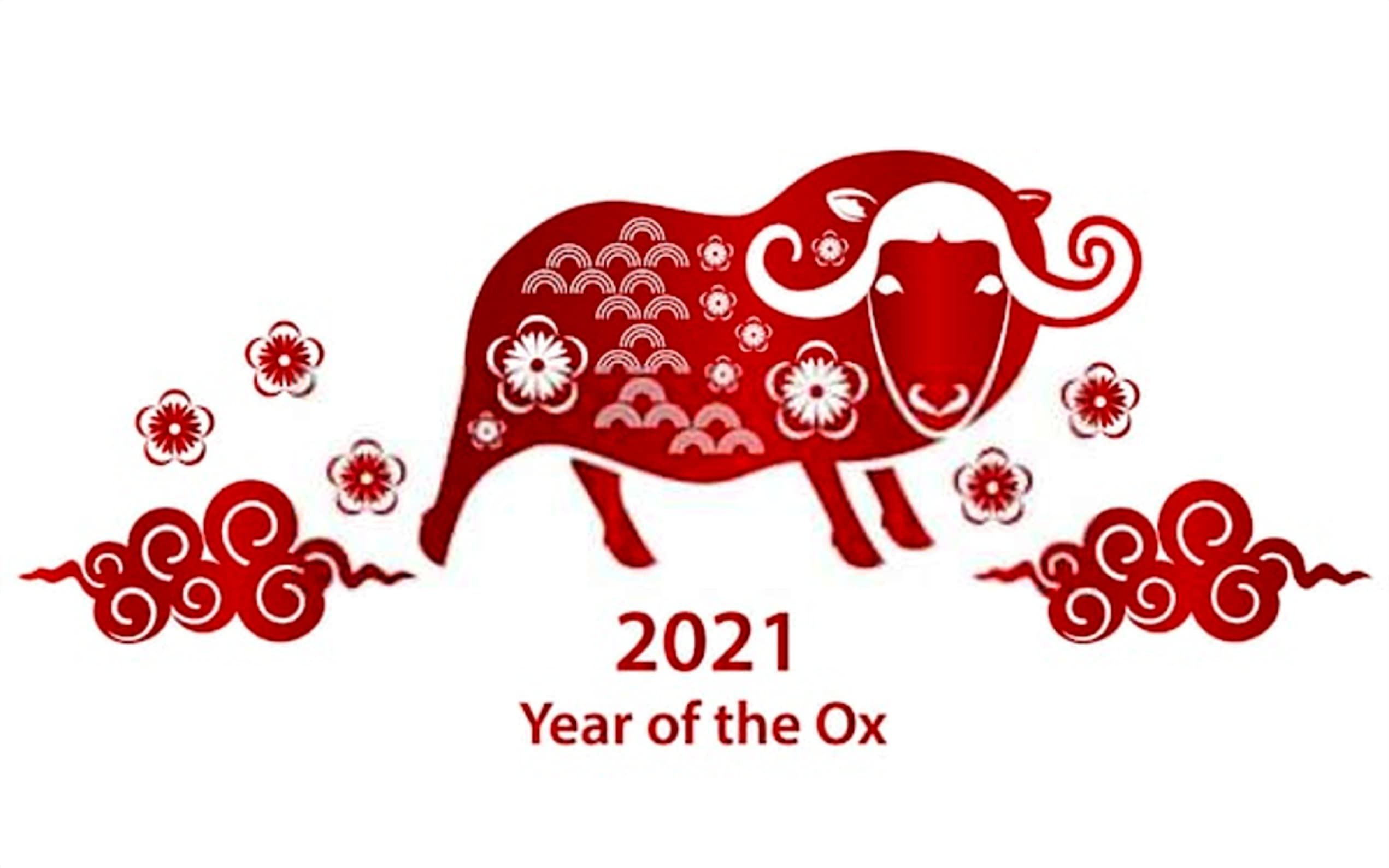 Chinese New Year 2021 Images and Wallpaper in 2020 | Year of the cow,  Christmas flyer template, Happy chinese new year