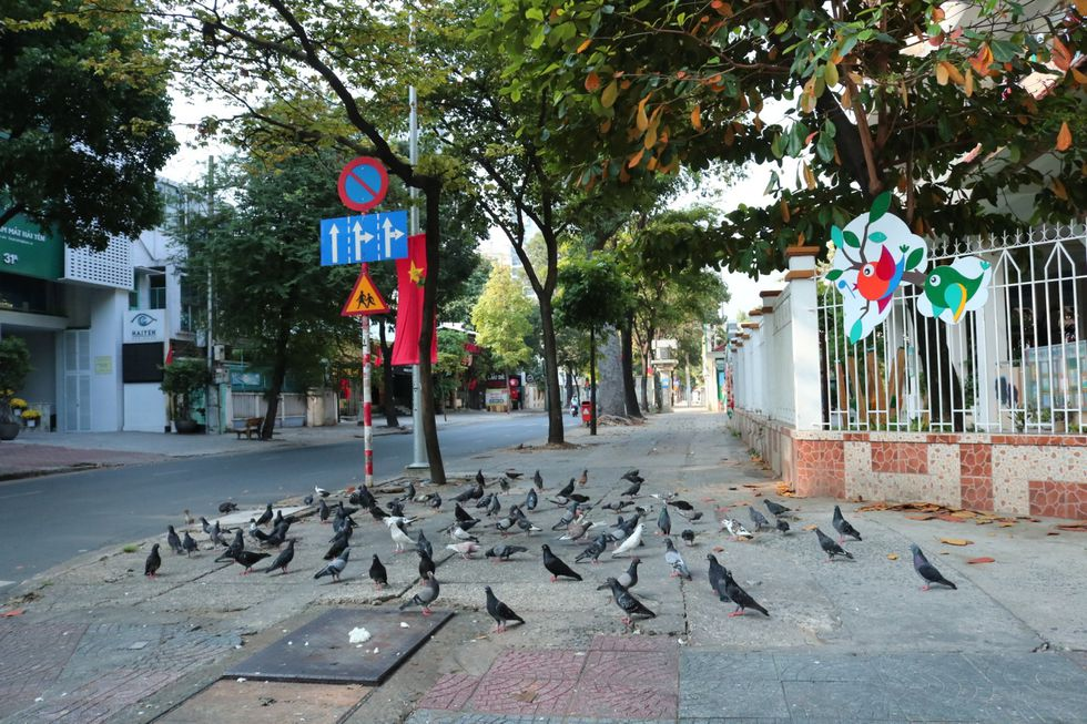 The moment when Saigon Street in the early morning of the New Year, Tan Suu without people, the most peaceful - photo 7