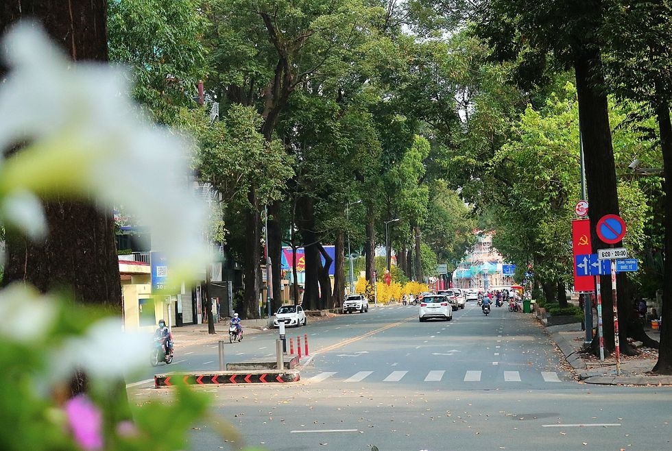 The moment Saigon Street early in the morning, on the first day of the New Year, Tan Suu without people, the most peaceful - photo 14